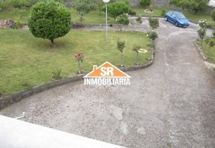 Image for SAMOEDO